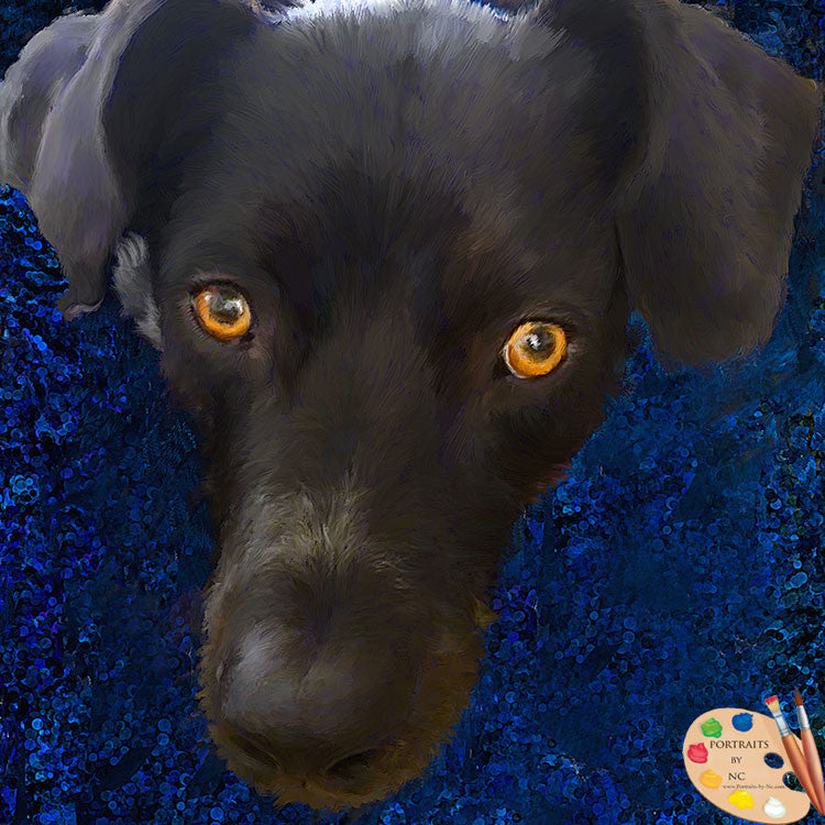 Custom Black Labrador Portrait