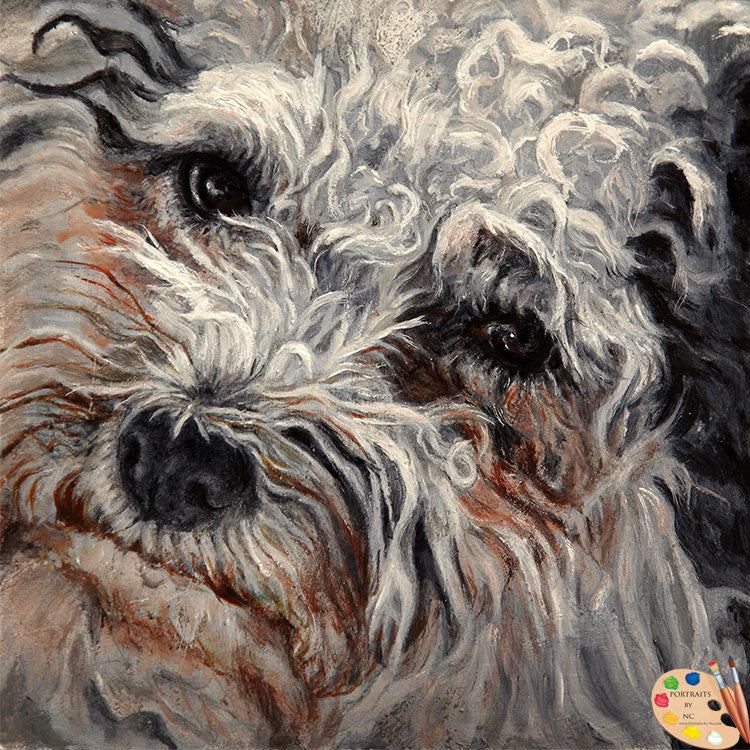 Bolognese Dog Portrait