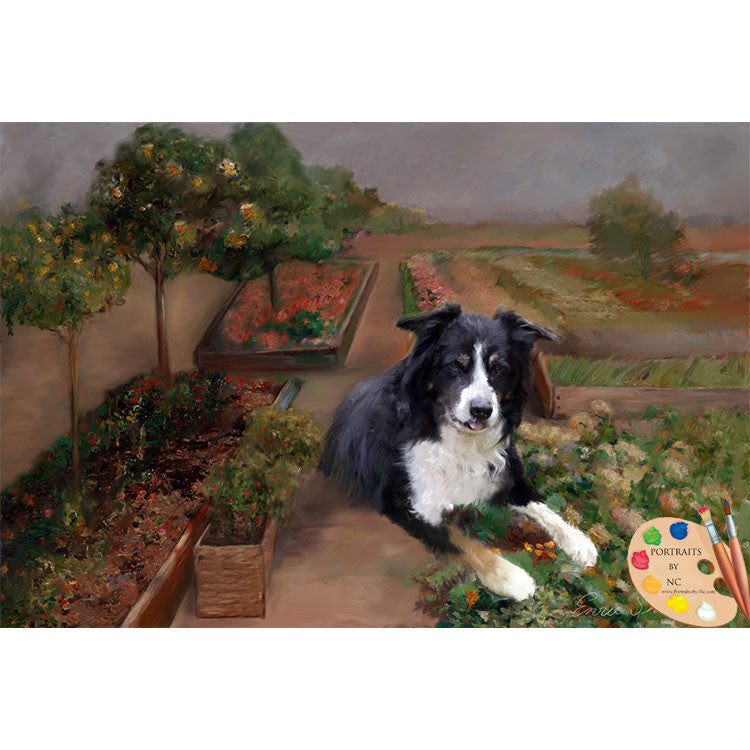 border-collie-oil-portrait