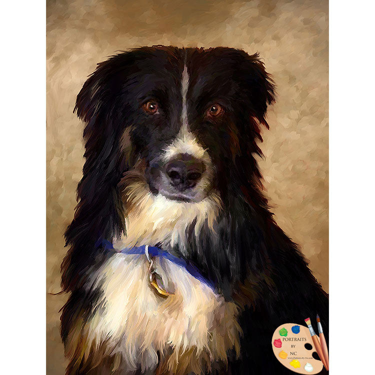 Border Collie Dog Painting