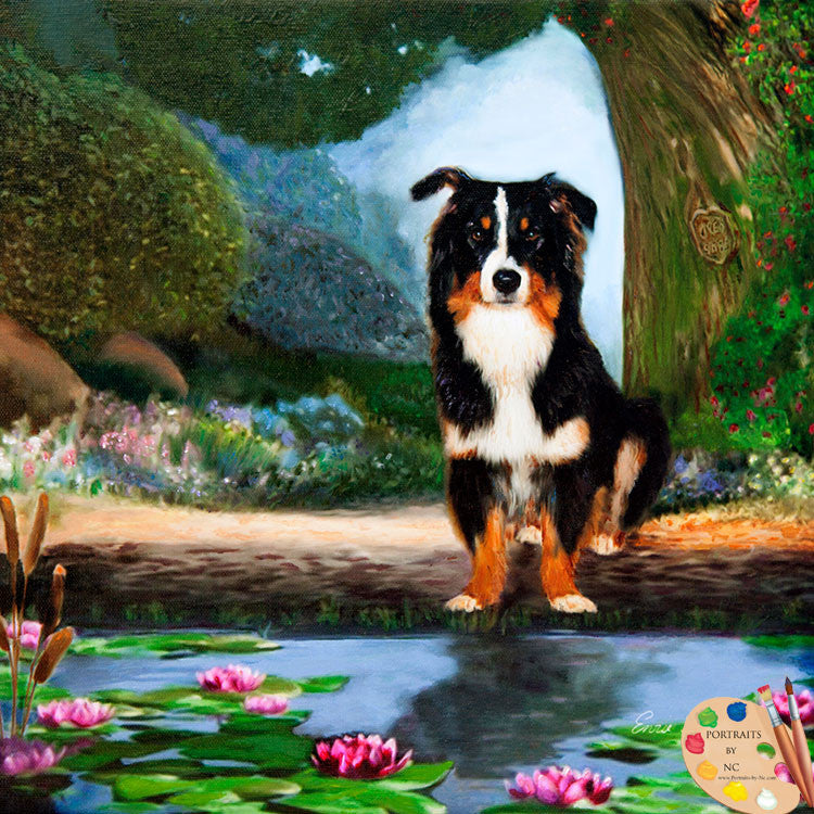 Border Collie Dog Portrait 230 - Portraits by NC