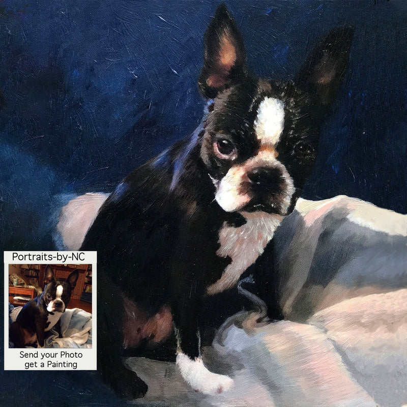 products/boston-terrier-558.jpg