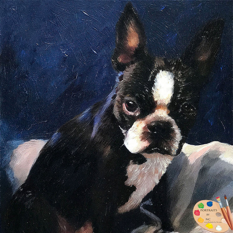 products/boston-terrier-portrait-558.jpg