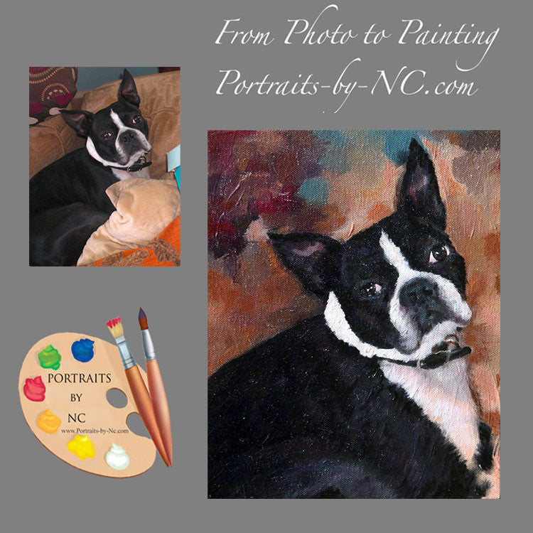 Boston Terrier Portrait from Photo