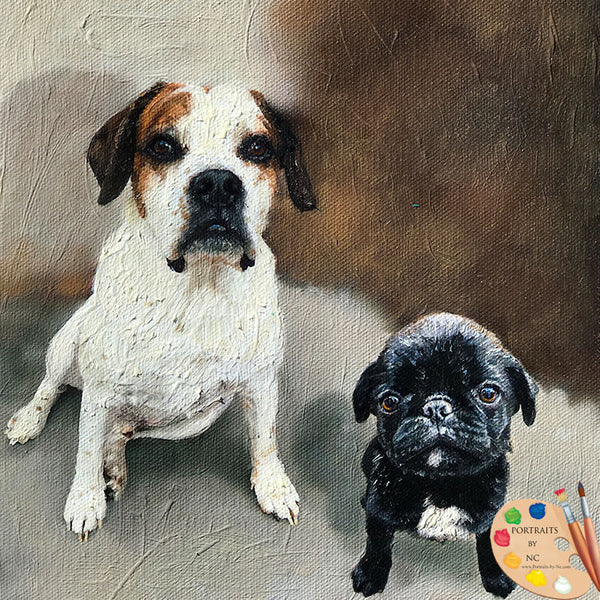 two-dogs-dog-portraits