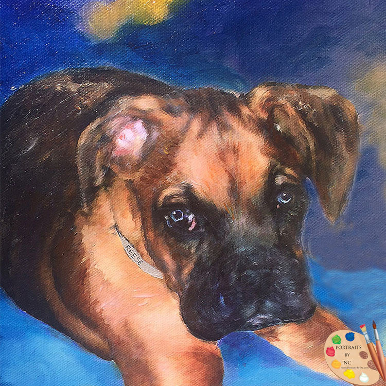 Boxer Puppy Oil Portrait 411 - Portraits by NC