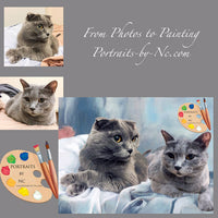 British Shorthair Cat Portrait from Photo