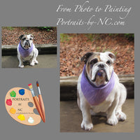Bulldog Pet Portrait 356 - Portraits by NC