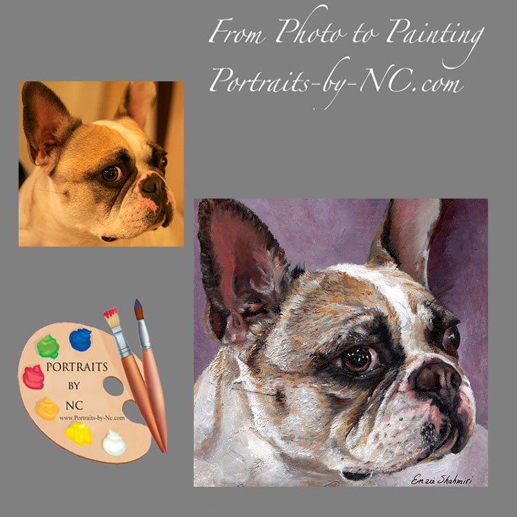 French Bulldog Portrait from Photo 172