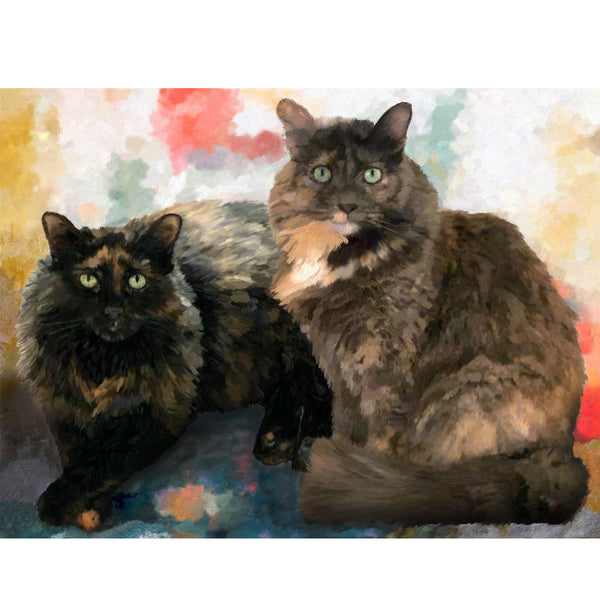 Two Calico Cats
