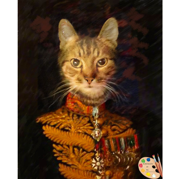 Cat in Military Costume Painting