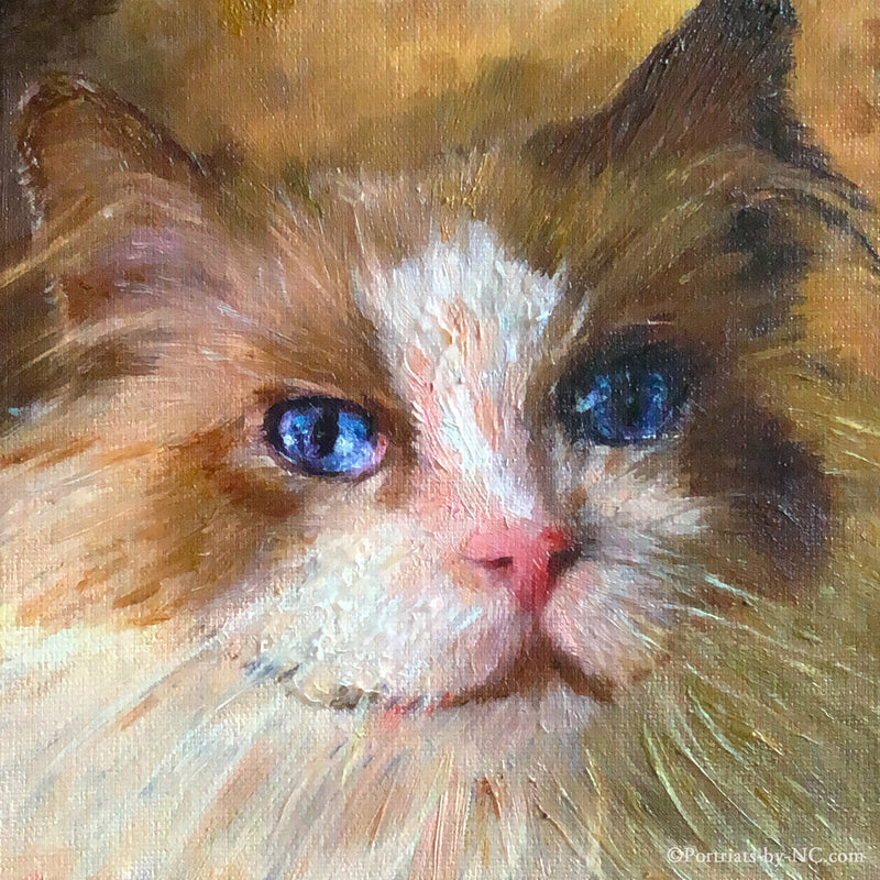 products/cat-oil-portrait.jpg