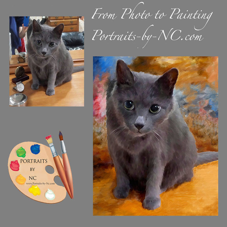 Grey Cat Portrait from Photo 541