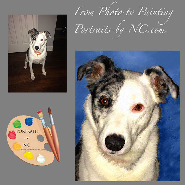 Catahoula Dog Portrait from Photo