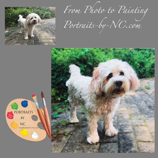 Cavachon Painting from Photo 598