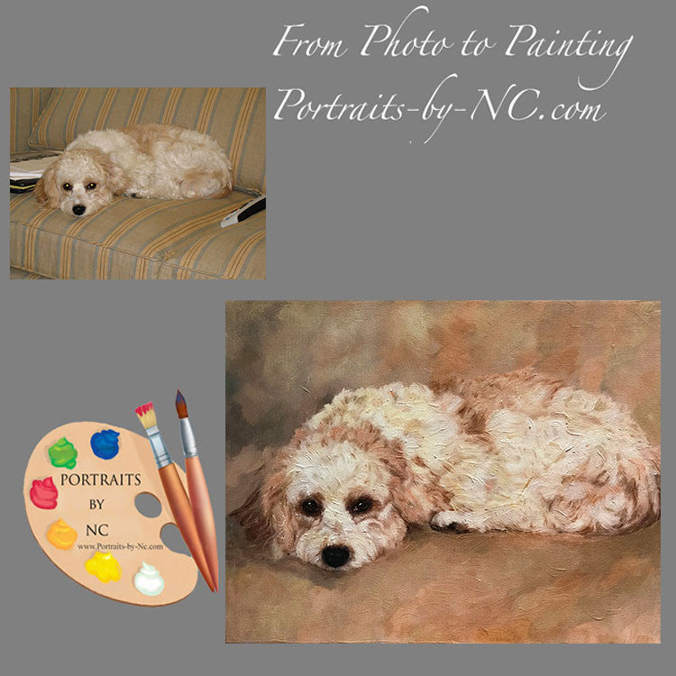 Cavachon Dog Portrait from Photo
