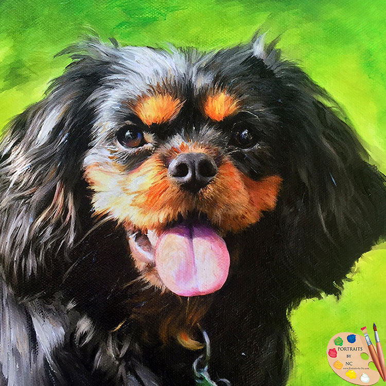 Black Cavalier King Charles Portrait