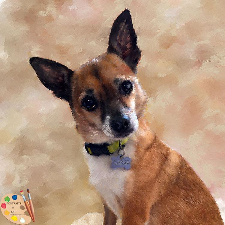 Sweet Looking Chihuahua Pet Portrait in Oil