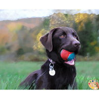 Labrador Painting Dog with Ball 369