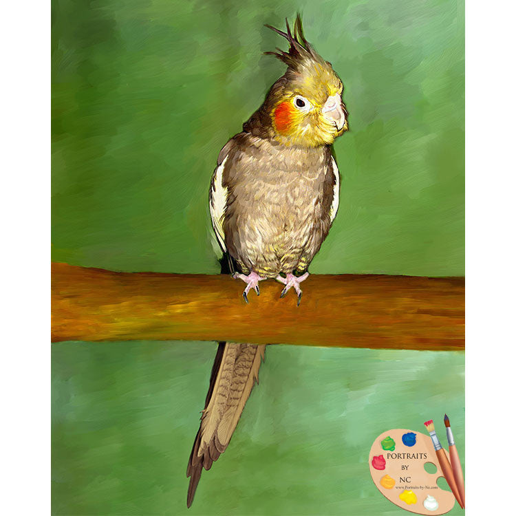 cockatiel-painting-534