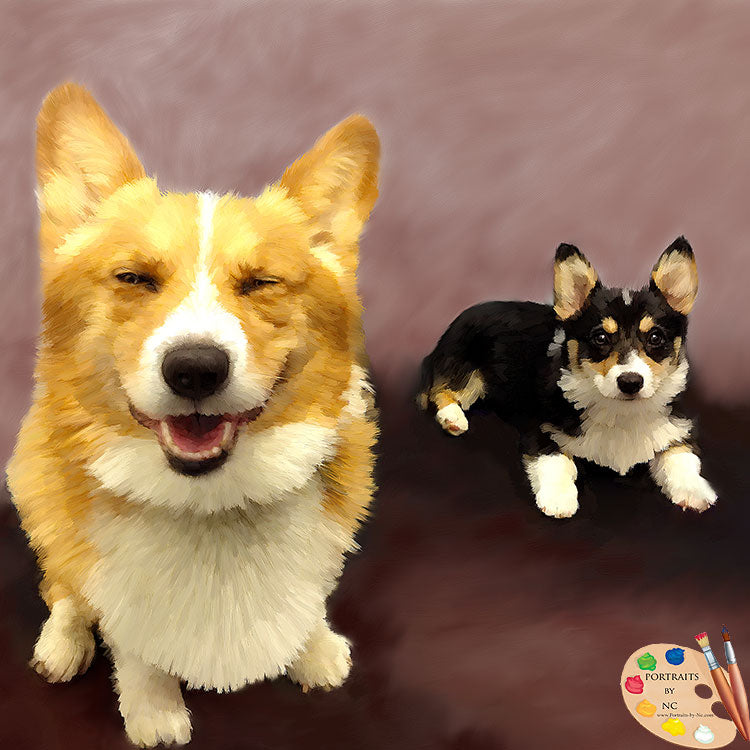 Corgis Group Dog Portraits