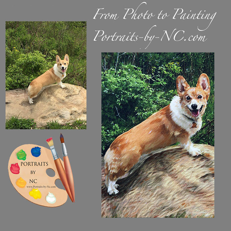 Corgi Pet Portrait from Photo