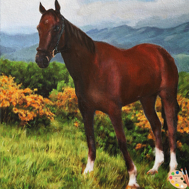 products/custom-horse-portrait-357.jpg