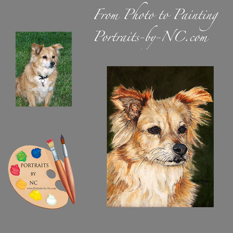 Mutt Pet Portrait 154 - Portraits by NC