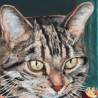 Tabby Cat Portraits