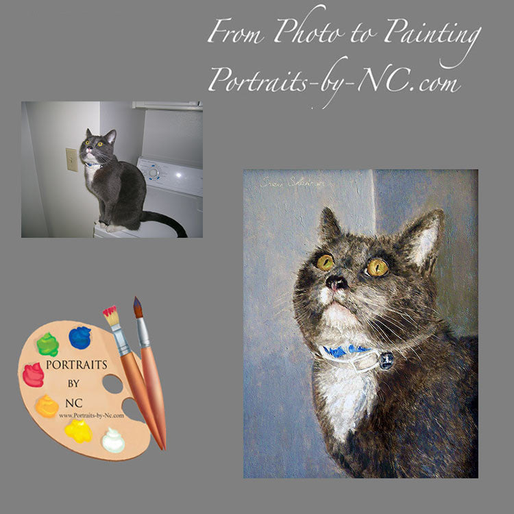 Grey Domestic Cat Portrait from Photo 106