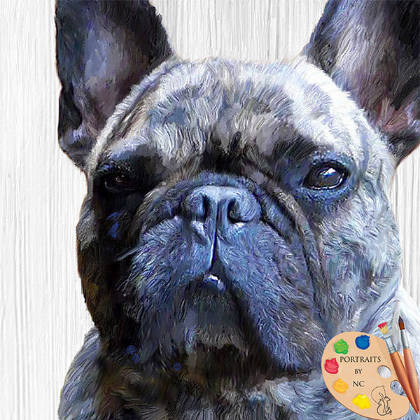 French Bulldog Dog Portraits 330