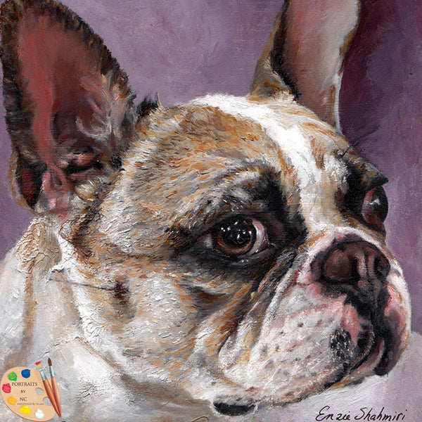 French Bulldog Portrait 172