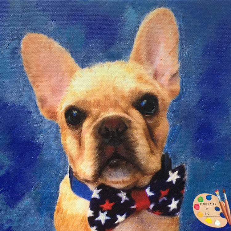 French Bulldog Puppy Portrait 374