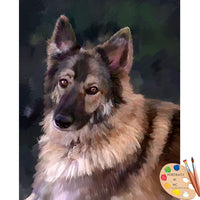 German Shepherd Portrait 609