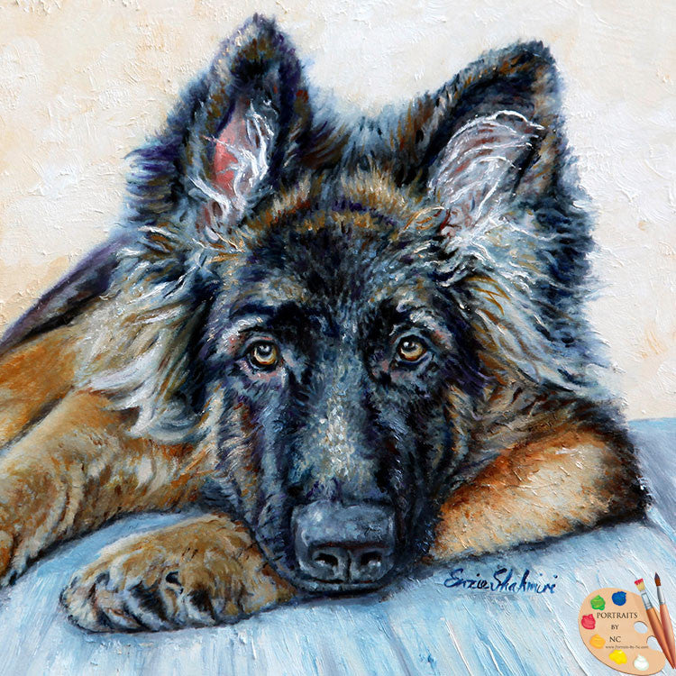 German Shepherd Portrait 175