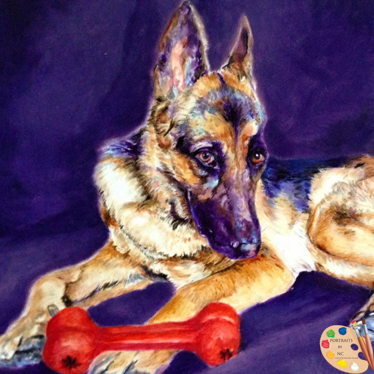 Portrait of German Shepherd 189