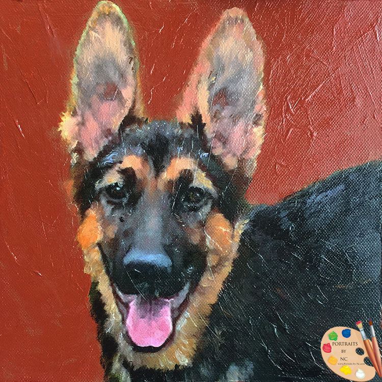 german-shepherd-portrait-003