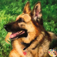 German Shepherd Pet Portrait 515