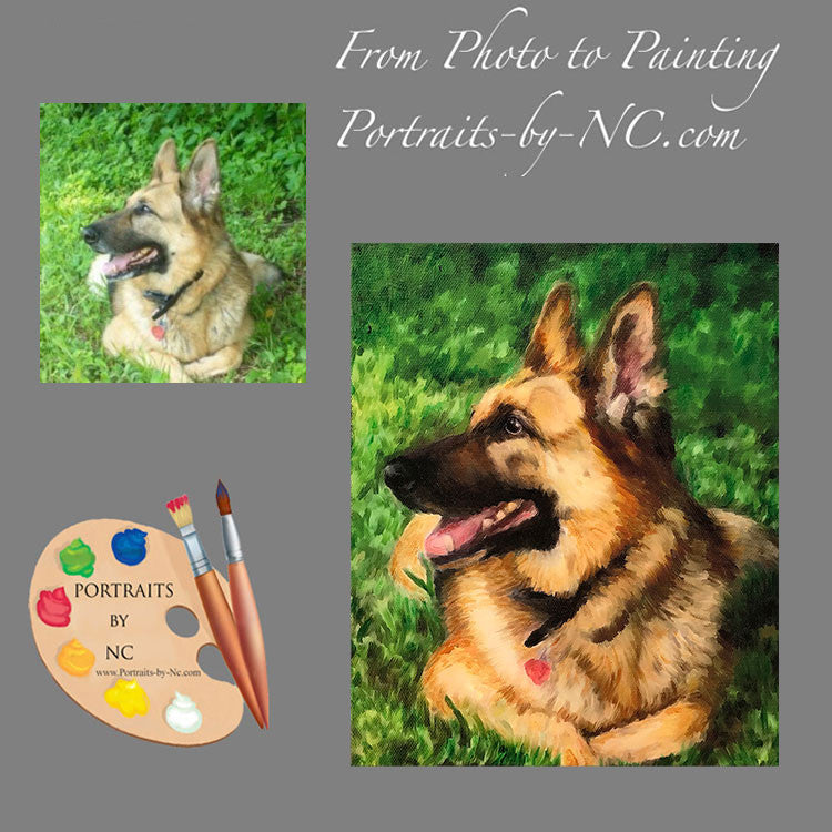 German Shepherd Pet Portrait from Photo 515