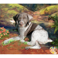 German Shorthair Puppy Portrait
