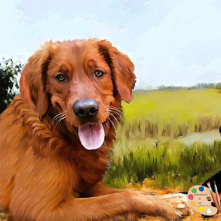 products/golden-retriever-dog-portrait-517.jpg