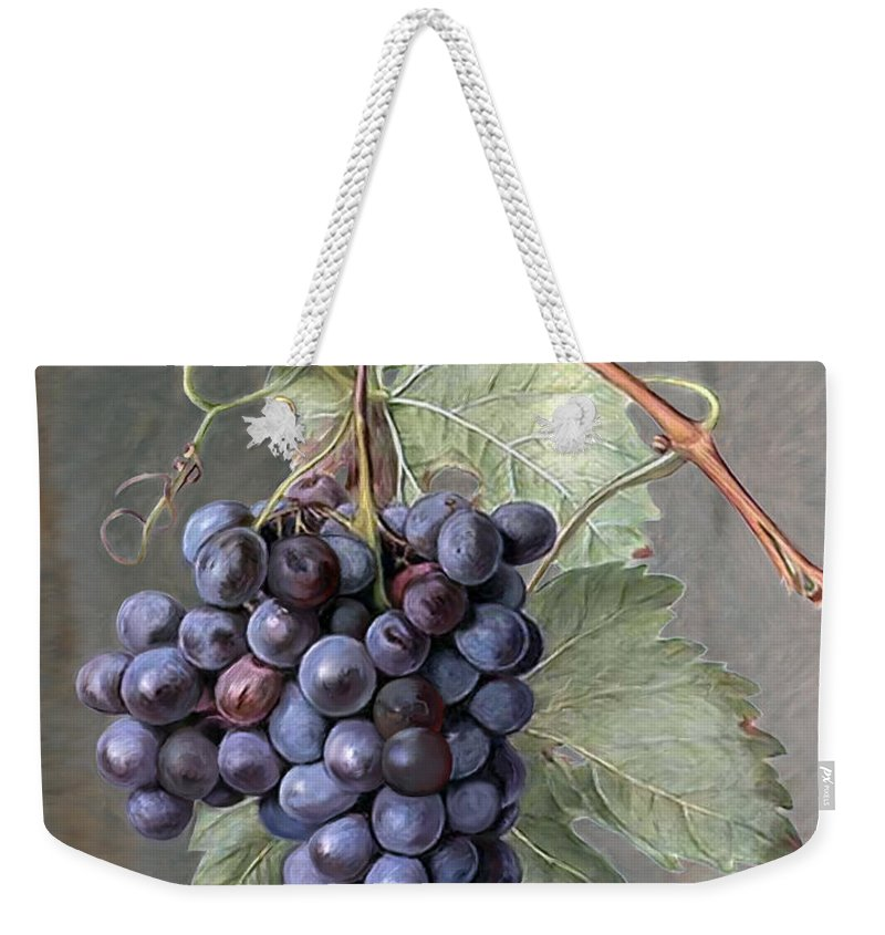 products/grapes-enzie-shahmiri_5b070f6d-e03d-4fb3-b996-40ef4385de12.jpg