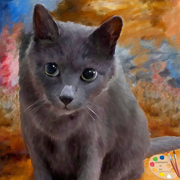 products/grey-cat-portrait-541.jpg