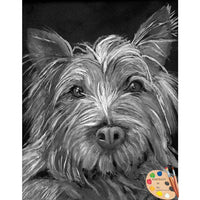 Highland Terrier Pet Painting 74
