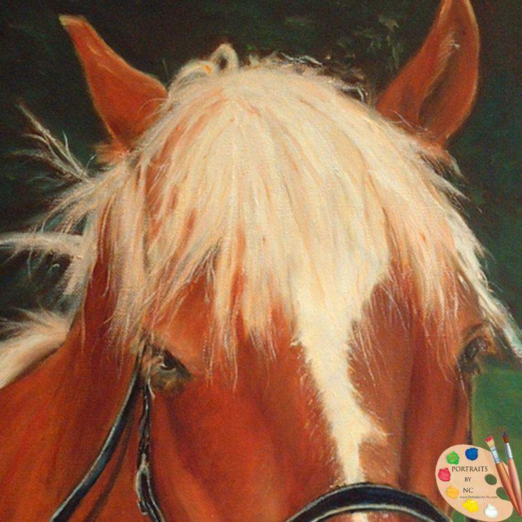 products/horse-43-detail.jpg