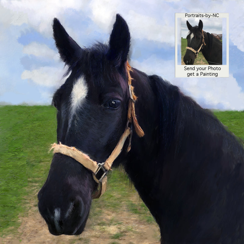 Custom Painted Horse Portraits - Horse Painting 693