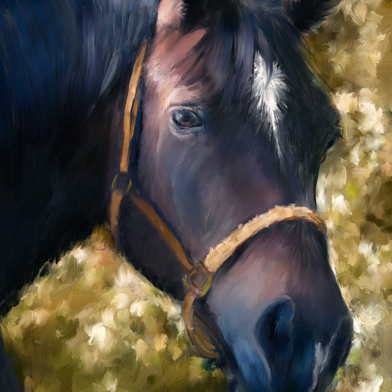 Tennessee Walker Horse Portrait detail