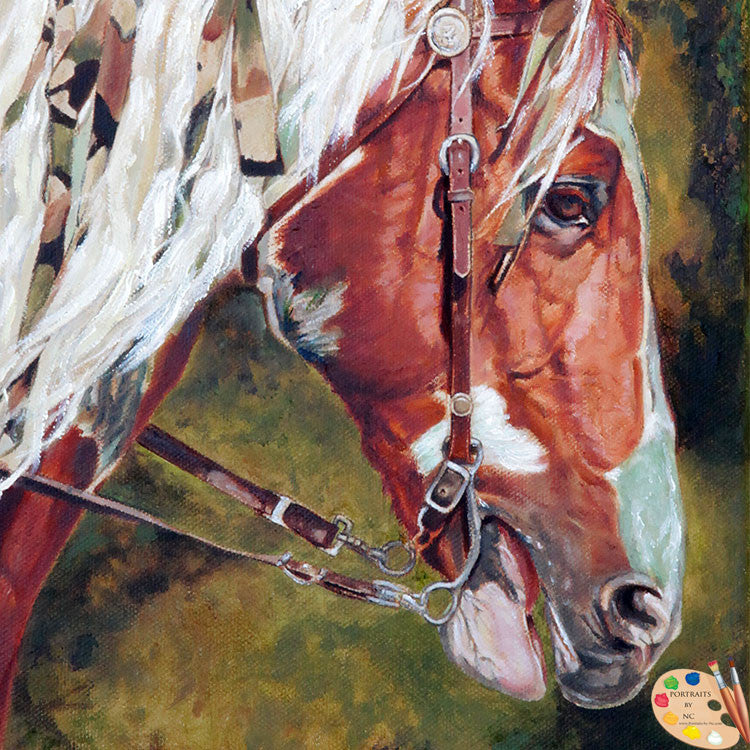 Equine Portrait Warriors Horse 153