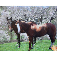 Horse Painting Horses in Cherry Tree Grove 361