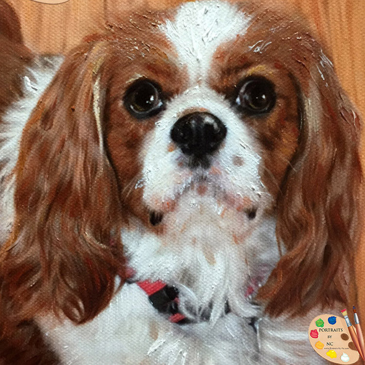 King Charles Spaniel Dog Portrait 338